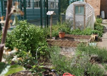 The Compton School Garden