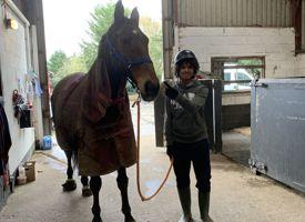 Strength through horses trip 04
